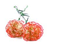 美丽的花是红色的与在白色背景的一支白色康乃馨 库存图片
