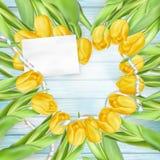 美丽的花束郁金香 10 eps 库存图片