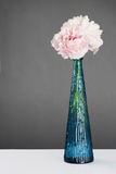 美丽的花灰色超出牡丹粉红色 库存图片