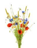 美丽的花矢车菊花束,春黄菊麦子和 库存照片