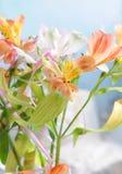 美丽的花 百合,从百合的花束在轻的背景 免版税库存照片
