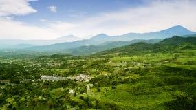 美丽的茶园和村庄在有薄雾的早晨 免版税库存图片