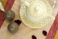 美丽的茶壶 免版税库存照片
