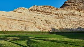 美丽的草坪和保管妥当的树篱与一个织地不很细层状岩石 免版税库存照片