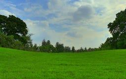 美丽的草坪和蓝天 库存图片
