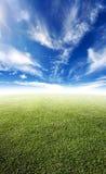 美丽的草甸 免版税库存图片