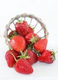 美丽的草莓 库存图片