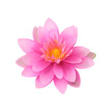 美丽的莲花,人造花 免版税库存照片