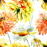 美丽的菊花和春黄菊花 图库摄影