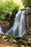 美丽的落下的瀑布 库存图片