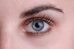 美丽的蓝眼睛 库存照片