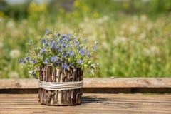 美丽的蓝色小花花束叫勿忘草 免版税图库摄影