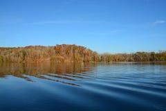 美丽的蓝色湖在森林里 免版税库存照片