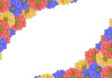 美丽的蓝色,黄色和桃红色新鲜的雏菊花喜欢壁角框架 库存图片