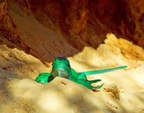 美丽的蜥蜴玩具 库存照片
