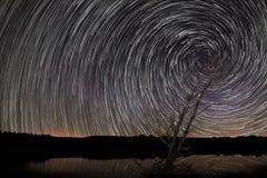 美丽的螺旋星落后在有老树的湖 免版税图库摄影