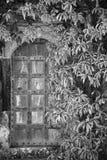 美丽的被围拢的葡萄酒维多利亚女王时代的豪宅进口  免版税图库摄影