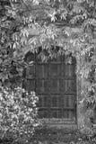 美丽的被围拢的葡萄酒维多利亚女王时代的豪宅进口  库存照片