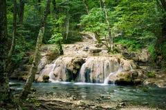 美丽的被弄脏的行动瀑布在深绿森林里 库存照片