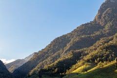 美丽的谷在哥伦比亚 免版税图库摄影