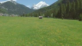 美丽的谷在意大利阿尔卑斯 股票录像