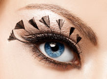 美丽的象女人的眼睛 免版税库存照片