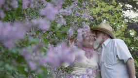 美丽的资深走在夏天的妇女和英俊的老人停放 影视素材