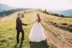 美丽的走的新娘和新郎阻挡在草甸的手有山背景 库存照片