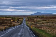 美丽的路在一个国家公园 免版税图库摄影