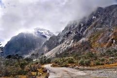美丽的路在喜马拉雅山 免版税库存照片