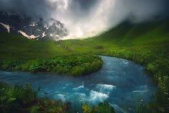 美丽的迅速河流动在早晨光的,有薄雾,夏季 库存照片