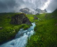 美丽的迅速河流动在早晨光的,有薄雾,夏季 免版税库存照片