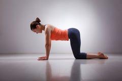 美丽的运动的适合信奉瑜伽者女孩实践瑜伽 图库摄影