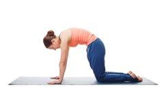 美丽的运动的适合yogini妇女实践瑜伽 免版税图库摄影