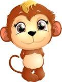 美丽的逗人喜爱的猴子 库存照片