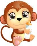 美丽的逗人喜爱的猴子 图库摄影