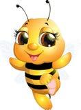 美丽的逗人喜爱的蜂 免版税图库摄影