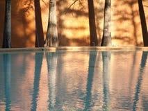 美丽的都市反射水池作为太阳设置 免版税库存图片