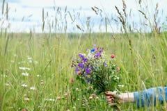 美丽的野花在女孩的手上夏天草甸背景的  季节,环境和生态的概念 免版税图库摄影