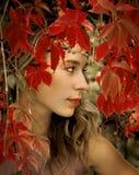 美丽的金发碧眼的女人 库存照片