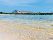 美丽的镇静spiaggia isuledda海滩在北部东部撒丁岛 库存图片