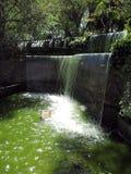 美丽的阳台和瀑布在塞罗圣伯纳德萨尔塔Jujuy阿根廷 免版税库存图片
