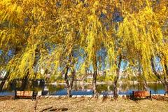美丽的阿瓦诺斯市在土耳其 免版税库存照片