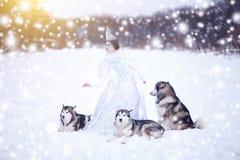 美丽的雪女王/王后witn狗 爱斯基摩或爱斯基摩狗 童话女孩 圣诞节 免版税库存照片