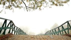 美丽的雾人河 股票视频