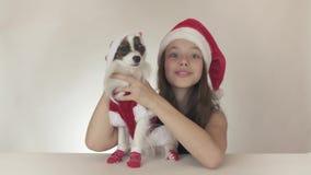 美丽的青少年的女孩和狗大陆玩具西班牙猎狗Papillon在圣诞老人打扮快乐亲吻和唬弄  股票录像