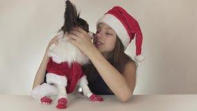美丽的青少年的女孩和狗大陆玩具西班牙猎狗Papillon在圣诞老人打扮快乐亲吻和唬弄  股票视频