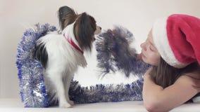 美丽的青少年的女孩在圣诞老人帽子和狗大陆玩具西班牙猎狗在新年使用` s的闪亮金属片的Papillon快乐  股票视频
