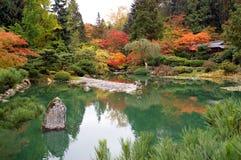 美丽的颜色池塘 免版税库存照片