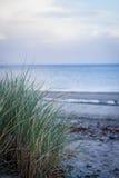 美丽的风景沙丘波罗的海在秋天 免版税库存图片